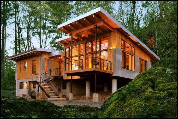 Modern House In The Woods