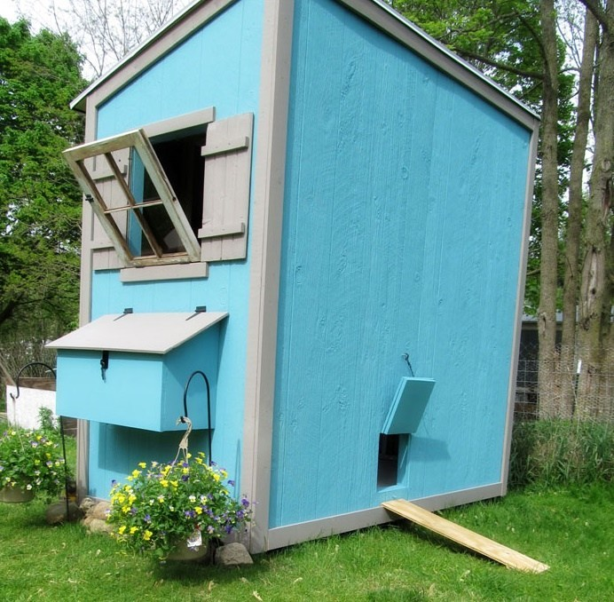 Shed Chicken Coop